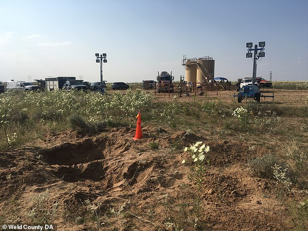 Location: The grave was located approximately 100 yards from the oil tanks where Watts disposed of the bodies of his two daughters (above)